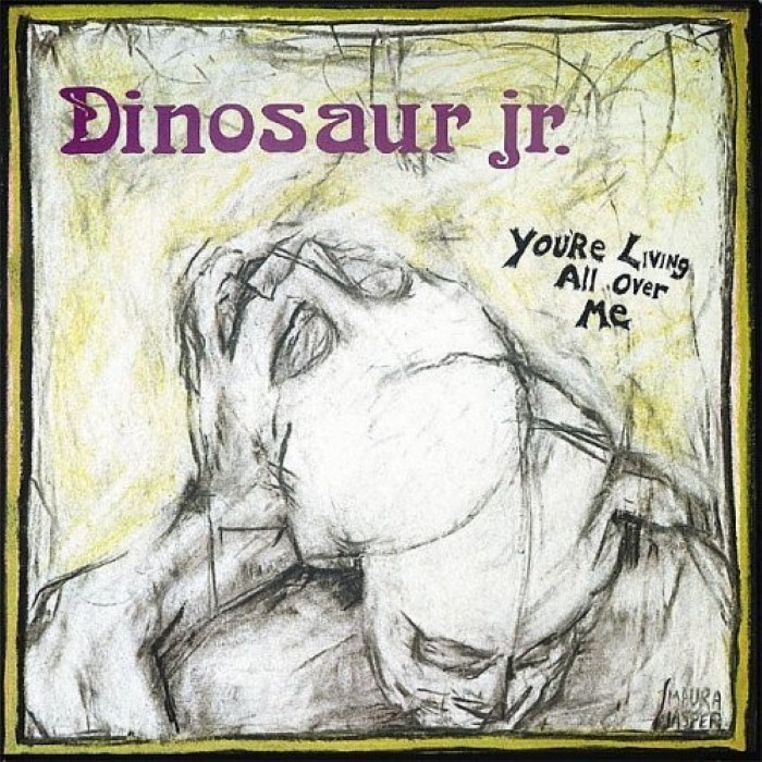 Dinosaur jr - You